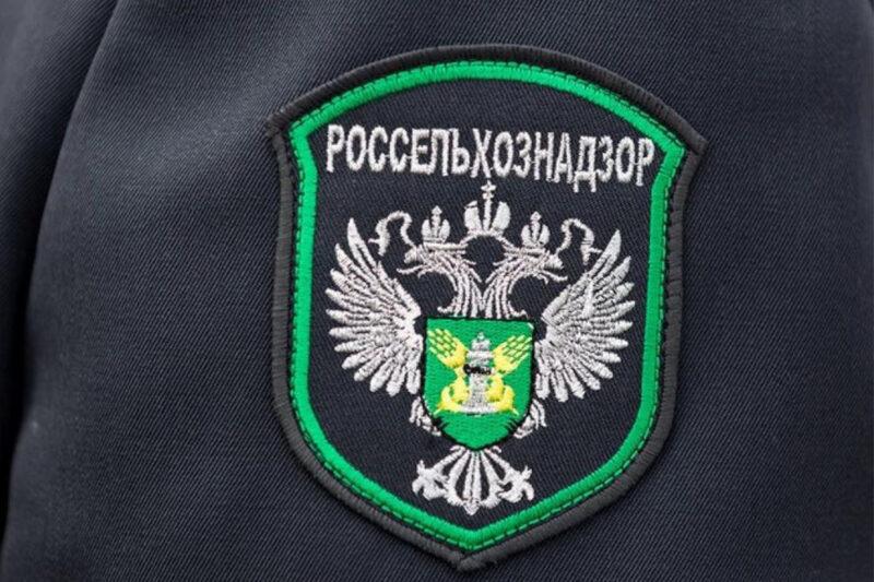 В Тверской области проведен мониторинг карантинного фитосанитарного состояния полей картофеля