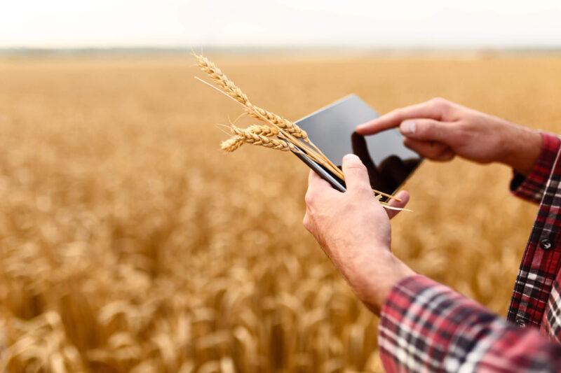 В Тверской области начали воплощать инвестиционные проекты для сельского хозяйства