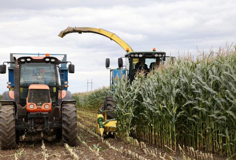 Темпы уборочных сельхозработ в Тверской области увеличены по сравнению с прошлыми годами