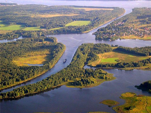 В Тверской области в Иваньковское водохранилище запустили 3 тыс. экземпляров молоди стерляди