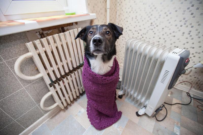 В жилые дома во всех районах Твери пришло первое тепло