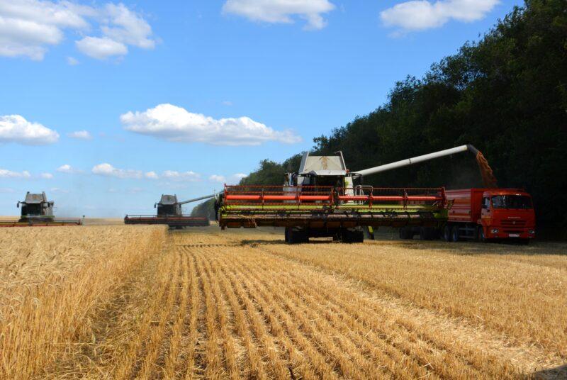 Тверским сельхозпроизводителям компенсируют затраты при трудоустройстве студентов-практикантов