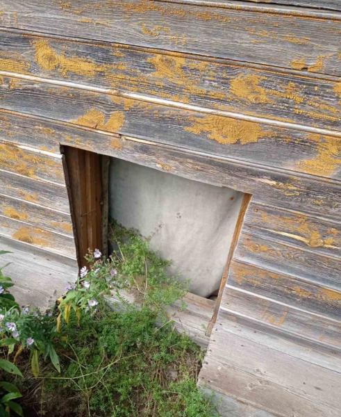 В Тверской области молодой парень украл из частного дома плиту и автомобильные диски