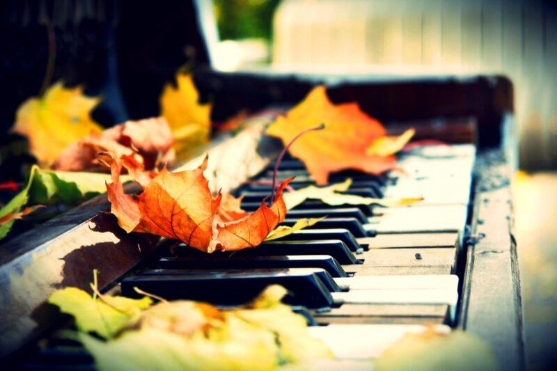 В Международный день музыки состоится открытие фестиваля«Музыкальная осень в Твери»