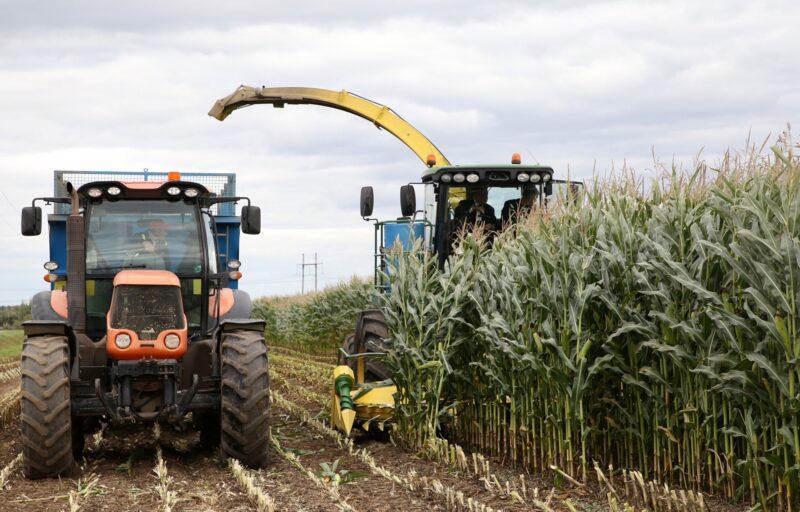 В Верхневолжье урожай собран на 75% от всей посевной площади