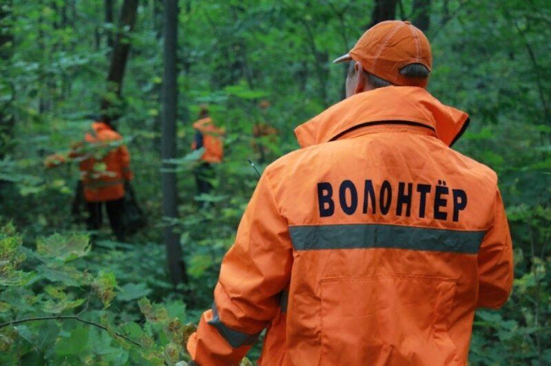 В Тверской области найдена пропавшая девочка