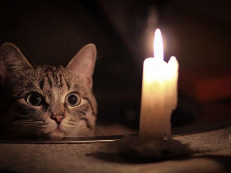 23 сентября в городах Тверской области планируется отключение света