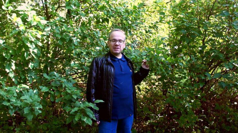 Поэт из Нелидово прочитал свои стихи об осени