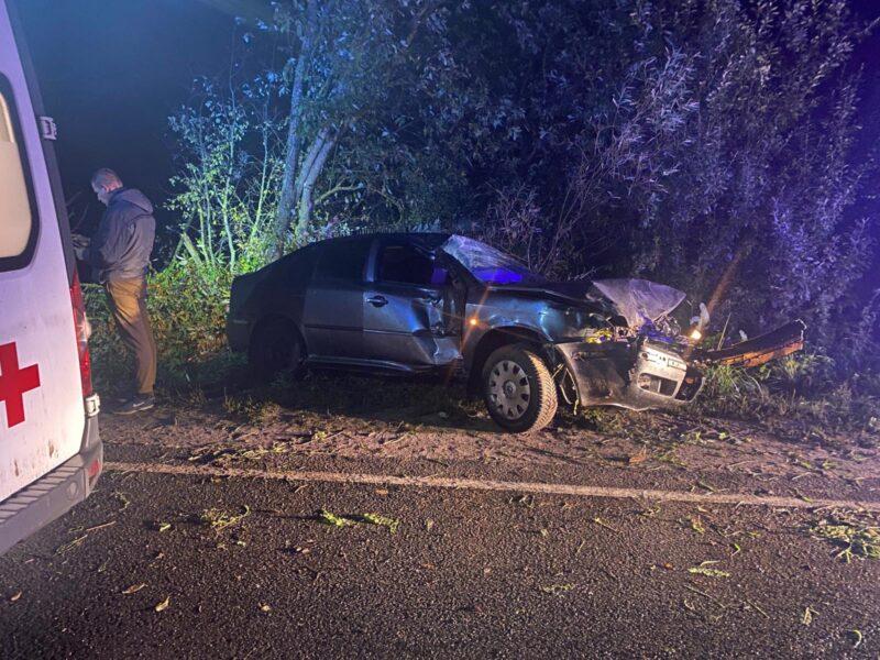 В Тверской области водитель иномарки потерял управление и вылетел в кювет