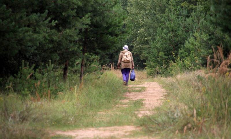 Сотрудники МЧС Тверской области спасли заблудившуюся в лесу пенсионерку