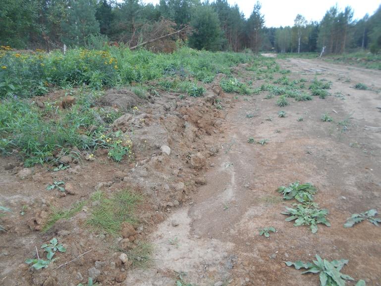 В Калининском районе выявлены нарушения земельного законодательства на 22 земельных участках