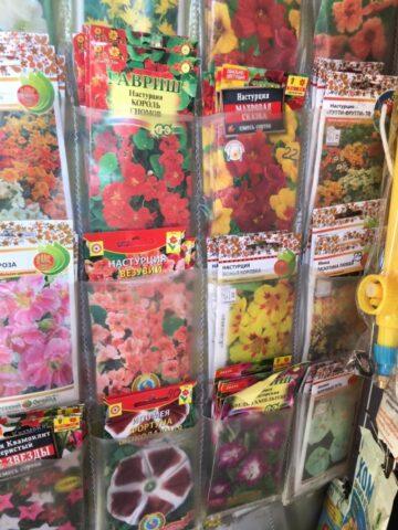 Специалисты проверили качество семян в городе Кимры