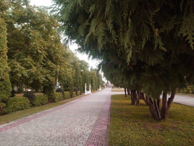 Тверской Городской сад отметил свой 90-летний юбилей
