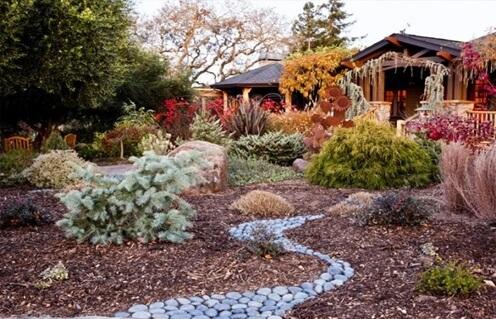 Специалисты рассказали, как готовить садовый участок к зиме