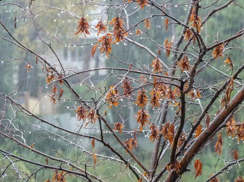 МЧС предупреждает жителей тверского региона о сильном дожде