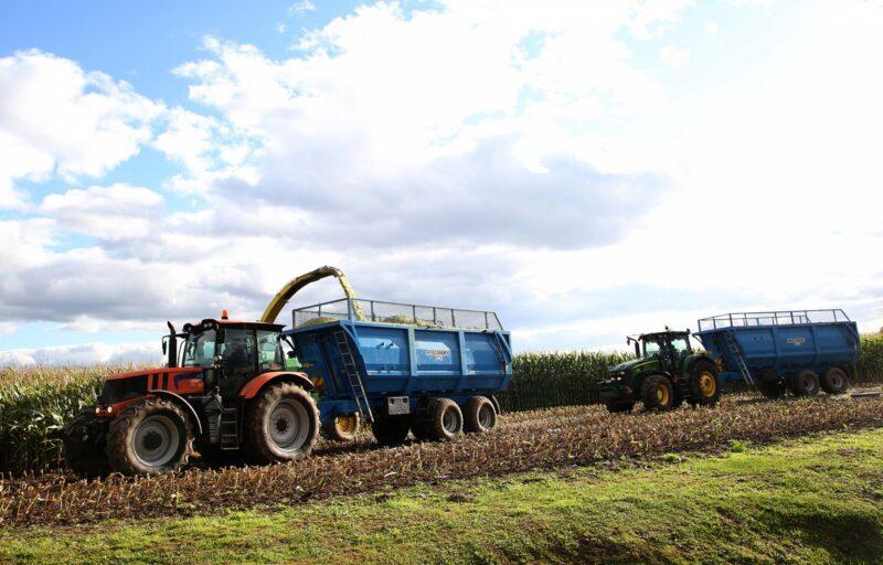 В Тверской области завершилась уборка озимых зерновых культур