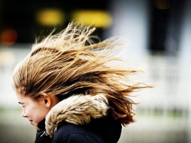 20 октября ожидается усиление ветра в Тверской области
