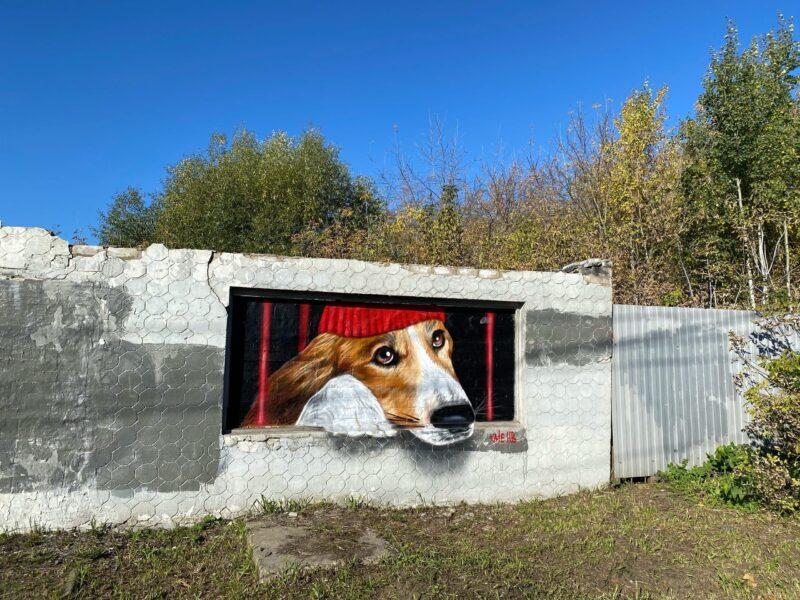 В Твери на месте закрашенного граффити появилось новое
