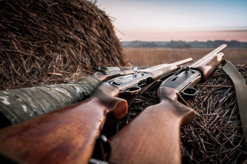 О сезонных особенностях охоты на лосей, оленей и кабанов рассказали охотникам из Тверской области