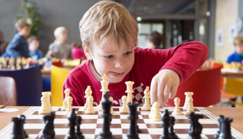 Тверских ребятишек приглашают на бесплатные шахматные игры